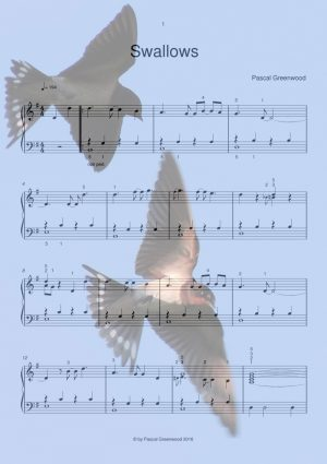 Swallows - new sheet music preview